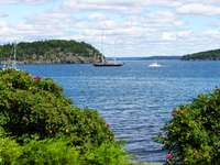 The shore path is a beautiful path along the coast of Bar Harbor thumb