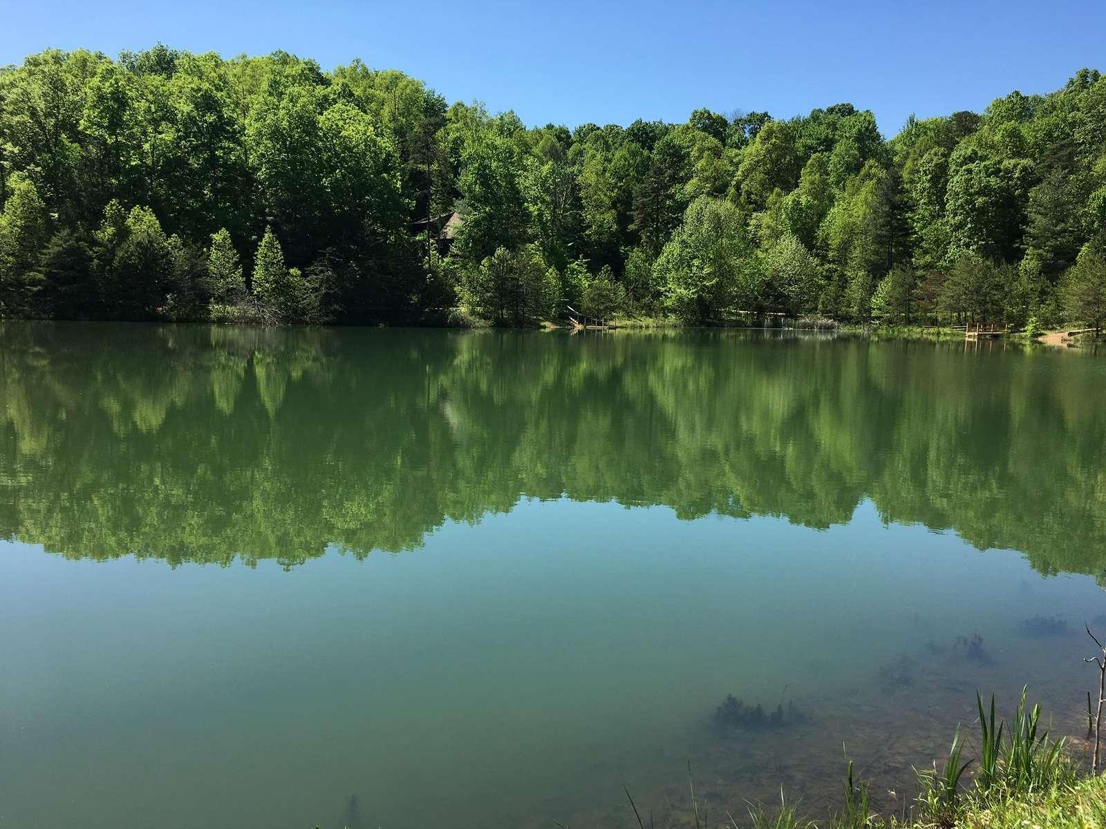 Kentucky Straight Wilderness_Deer Water Lake