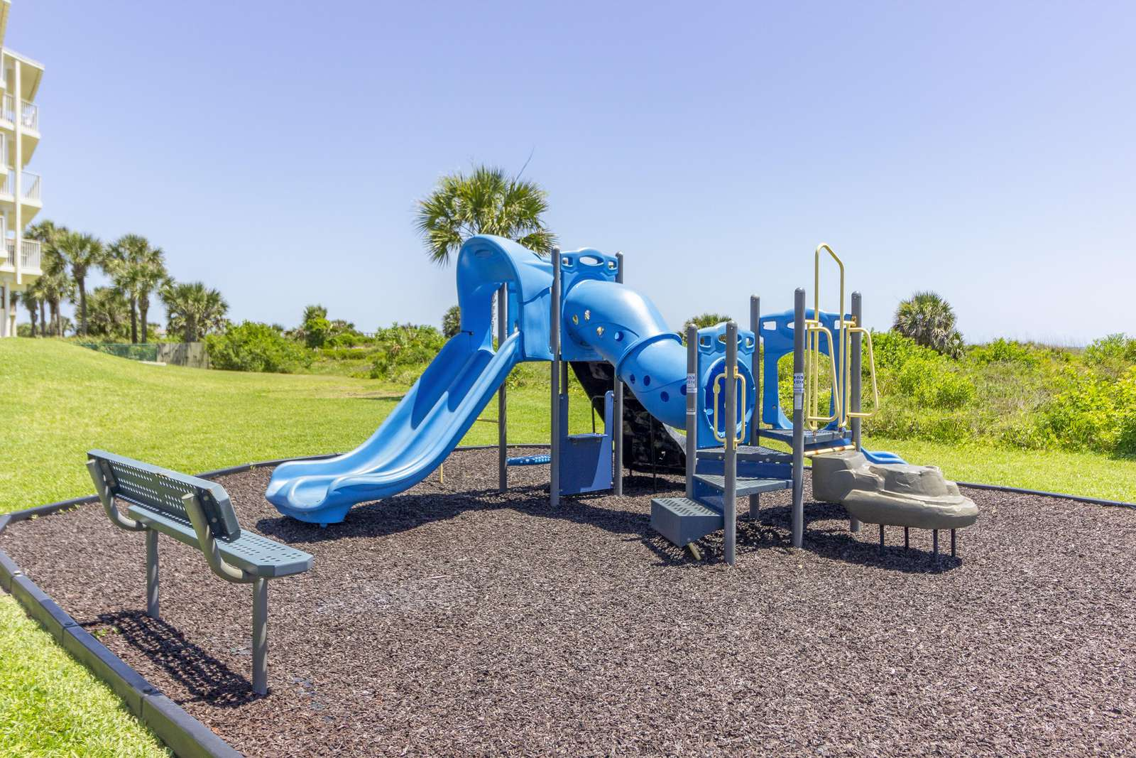Colony Reef Playground