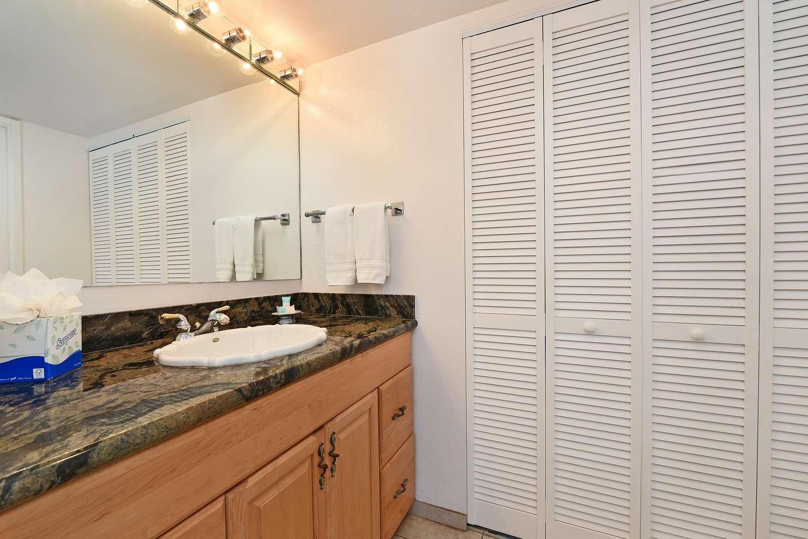 Vanity Sink Outside Shower