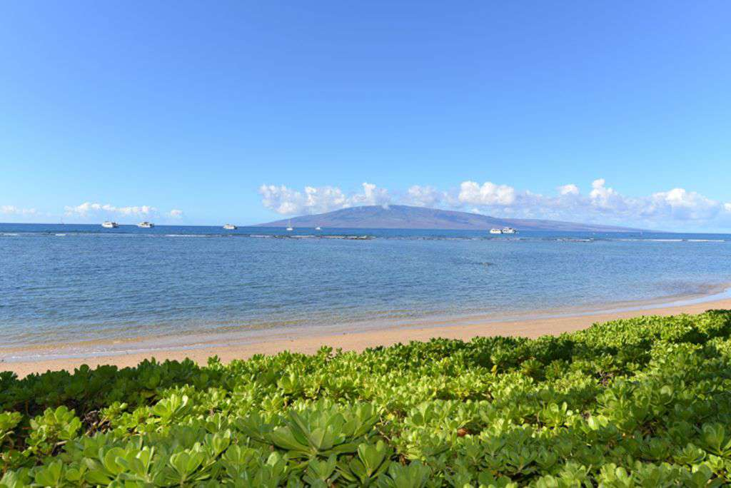 View Lanai From the Pool Area  And Whale When In Season