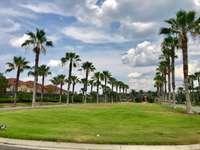 Paradise Palms Resort thumb