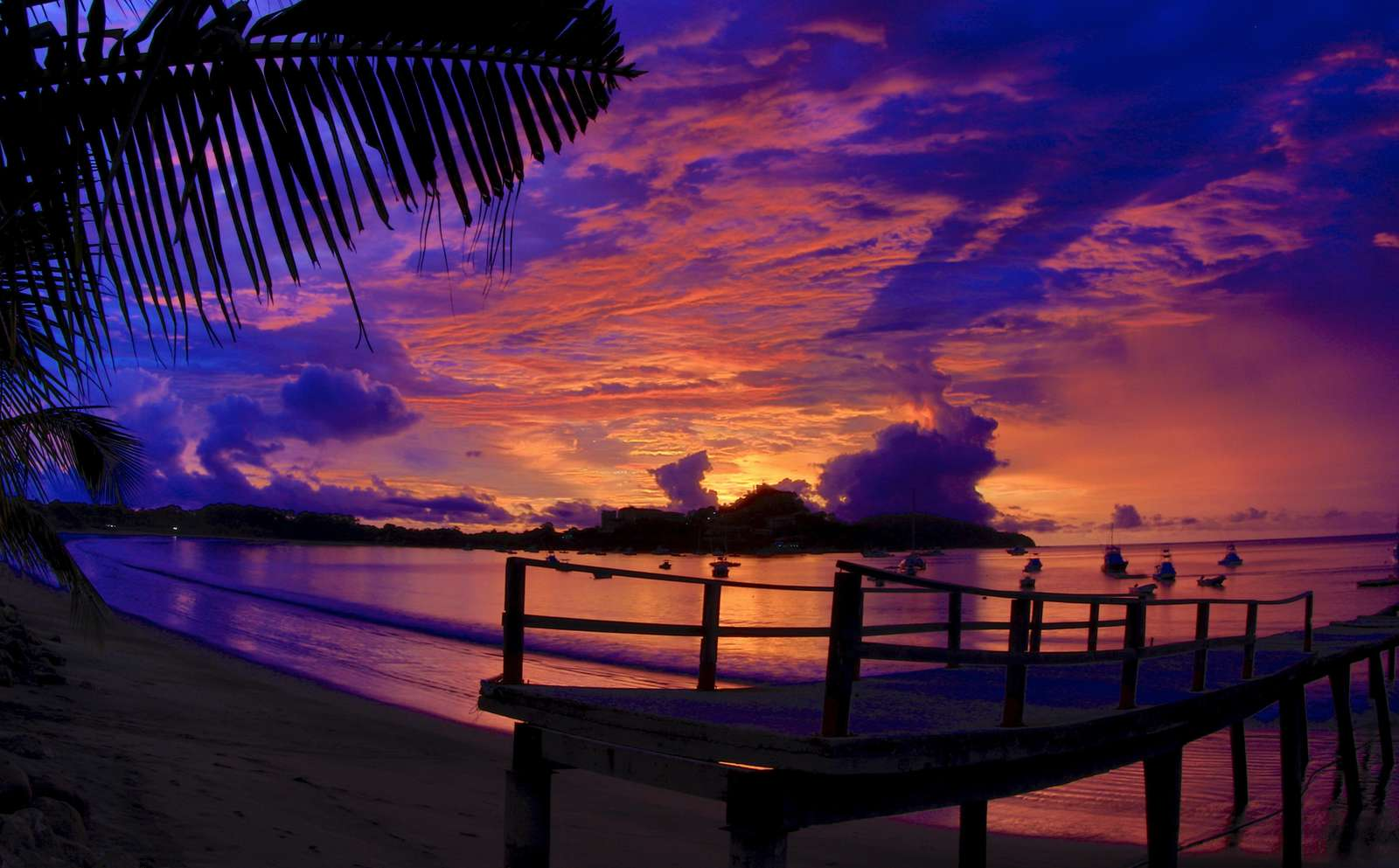 Stunning Flamingo sunsets