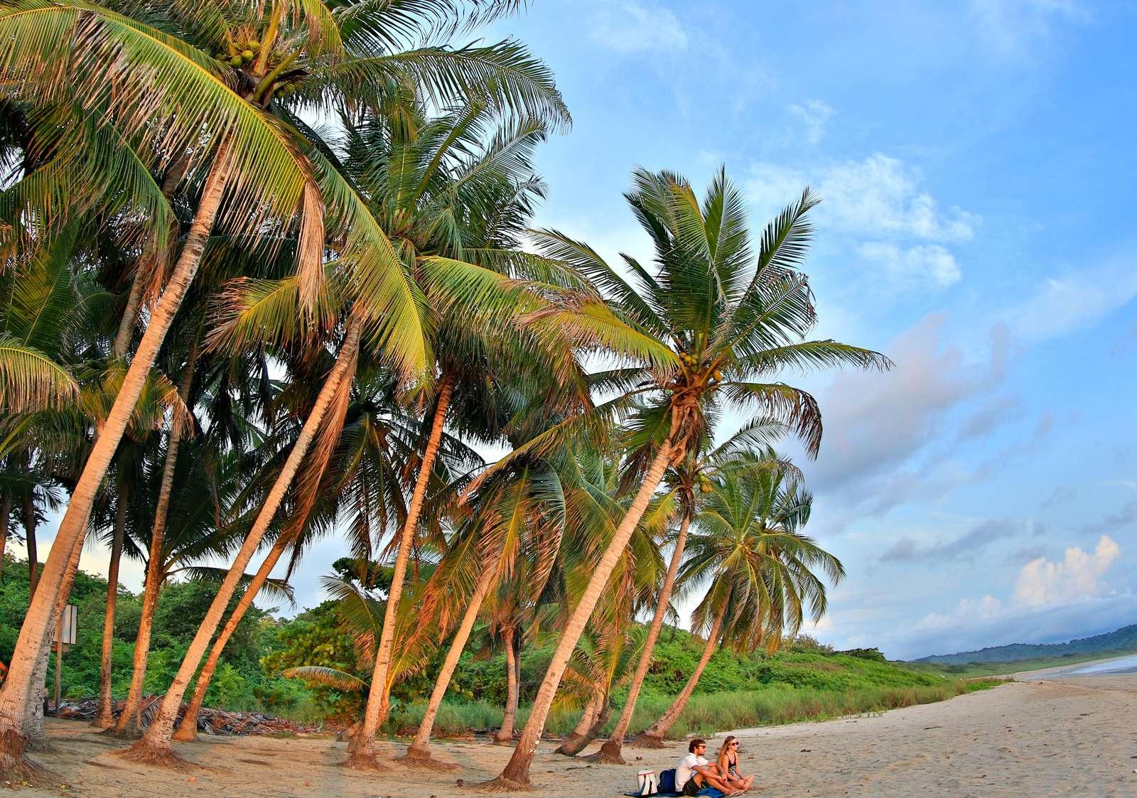 Area beaches