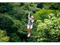 Ziplining-canopy tours thumb