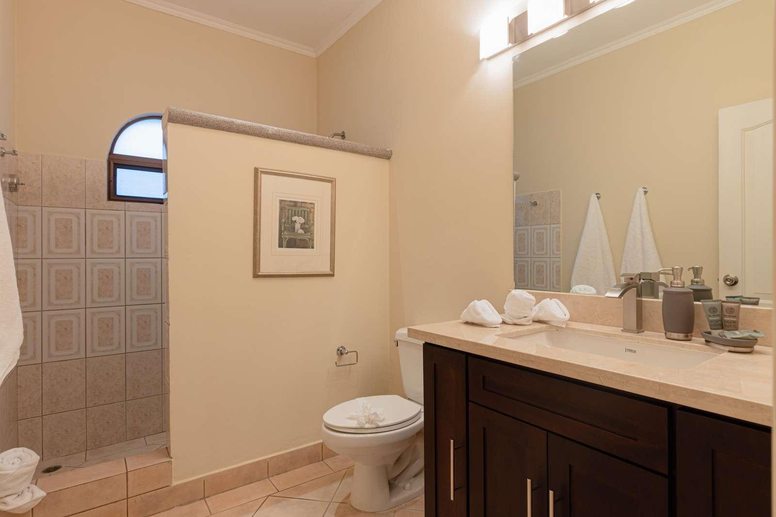Guest bathroom, walk in shower, granite countertops