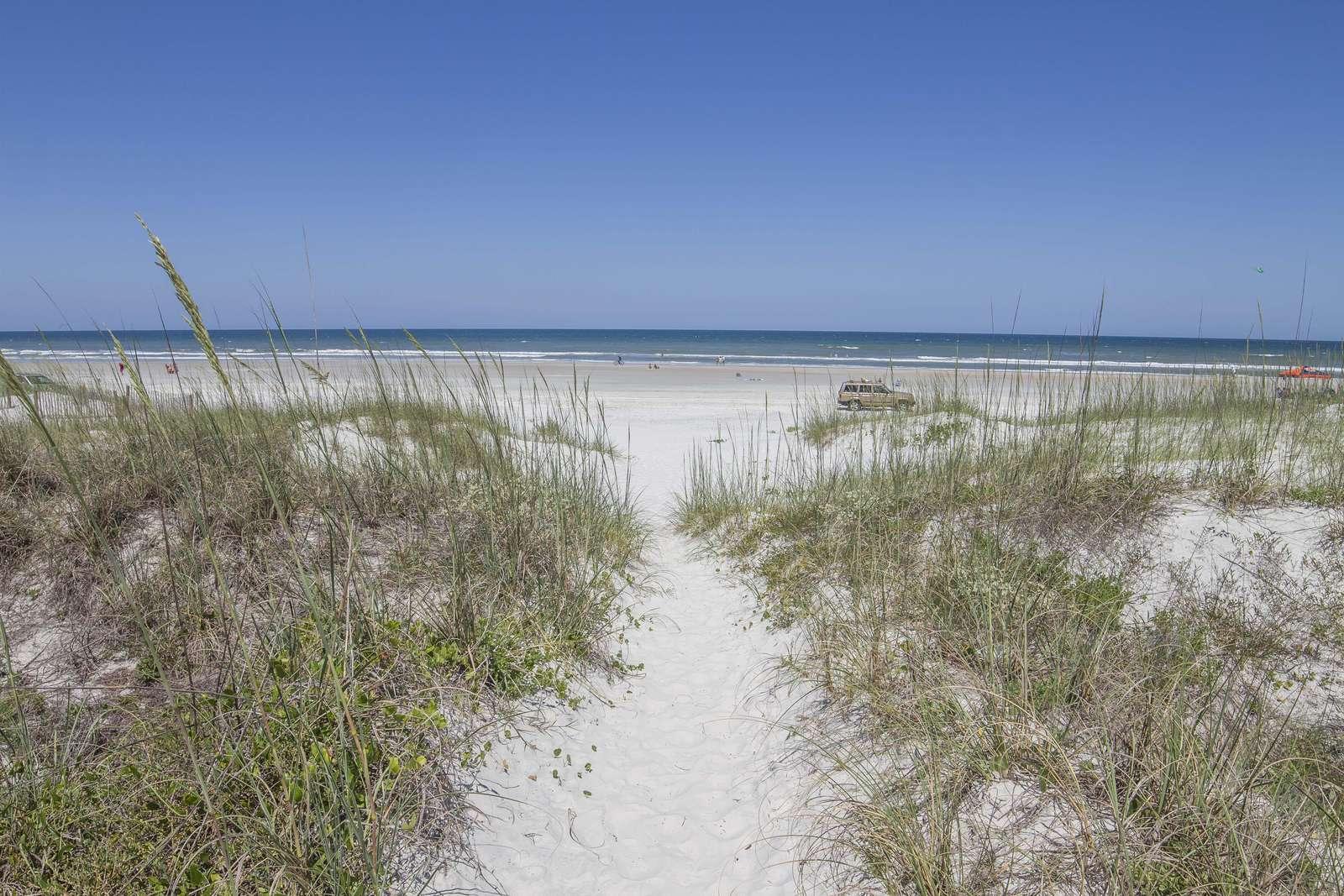 Dunes to Beach