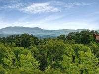 Gorgeous Mountain Backdrop thumb