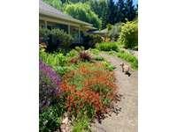 Lovely gardens & pet friendly thumb