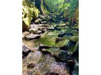 Purrington Creek swimming holes run through the property thumb