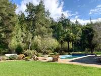 Rear fenced yard and pool area thumb