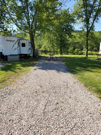 Site #49 (30 amp/Motorhome ONLY)
