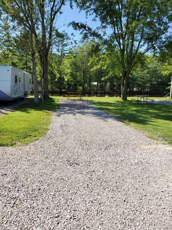 Site #64 (30 amp/Motorhome ONLY)