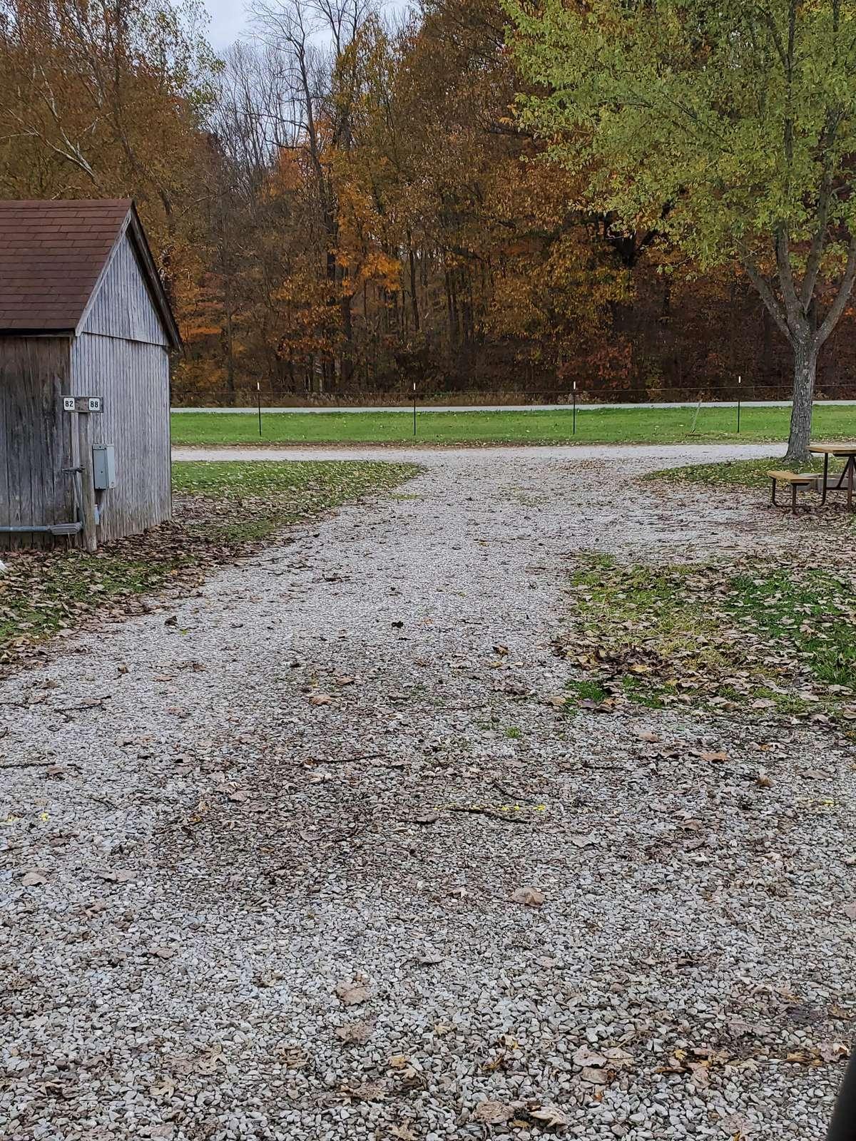 Site #88 (50 amp pull thru) - property