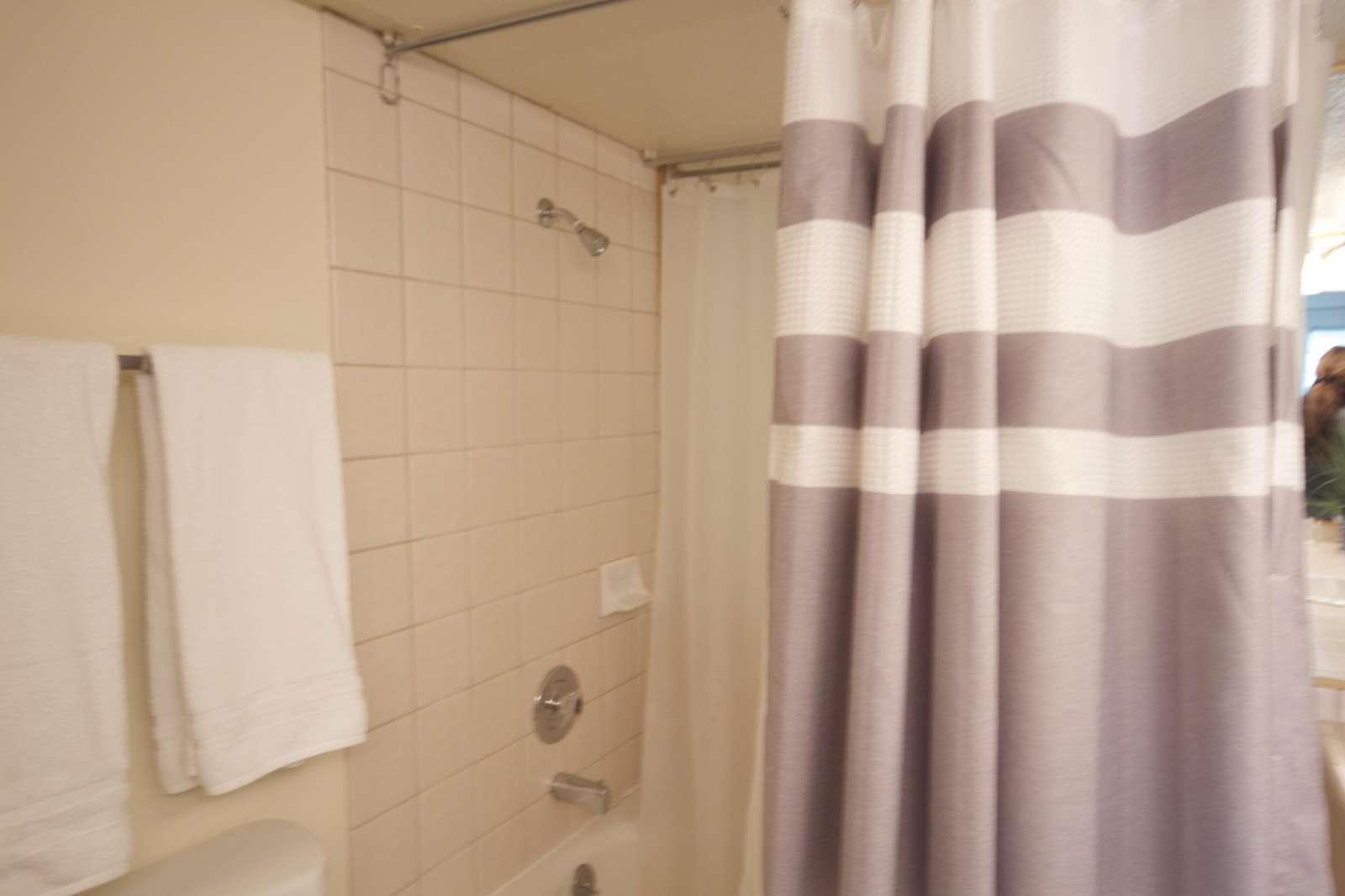 Garden Tub & Shower