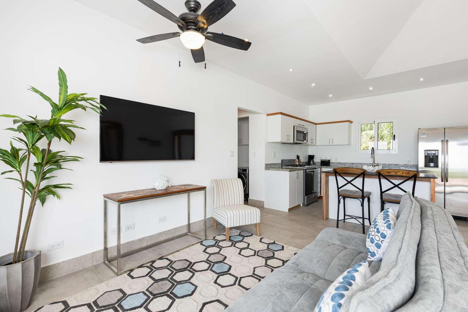 Living area, futon sofa, Smart TV