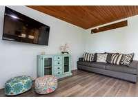 Living area, Smart TV, sleeper sofa thumb