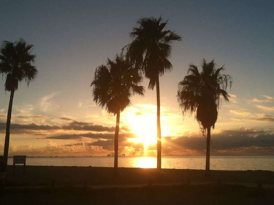 Another beautiful morning at Corpus Christi Beach Condos.   A great way to begin your morning with a cup of coffee!