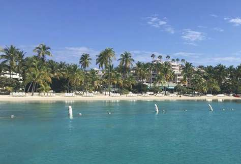 Breathtaking Palm Tree Lined Beach!