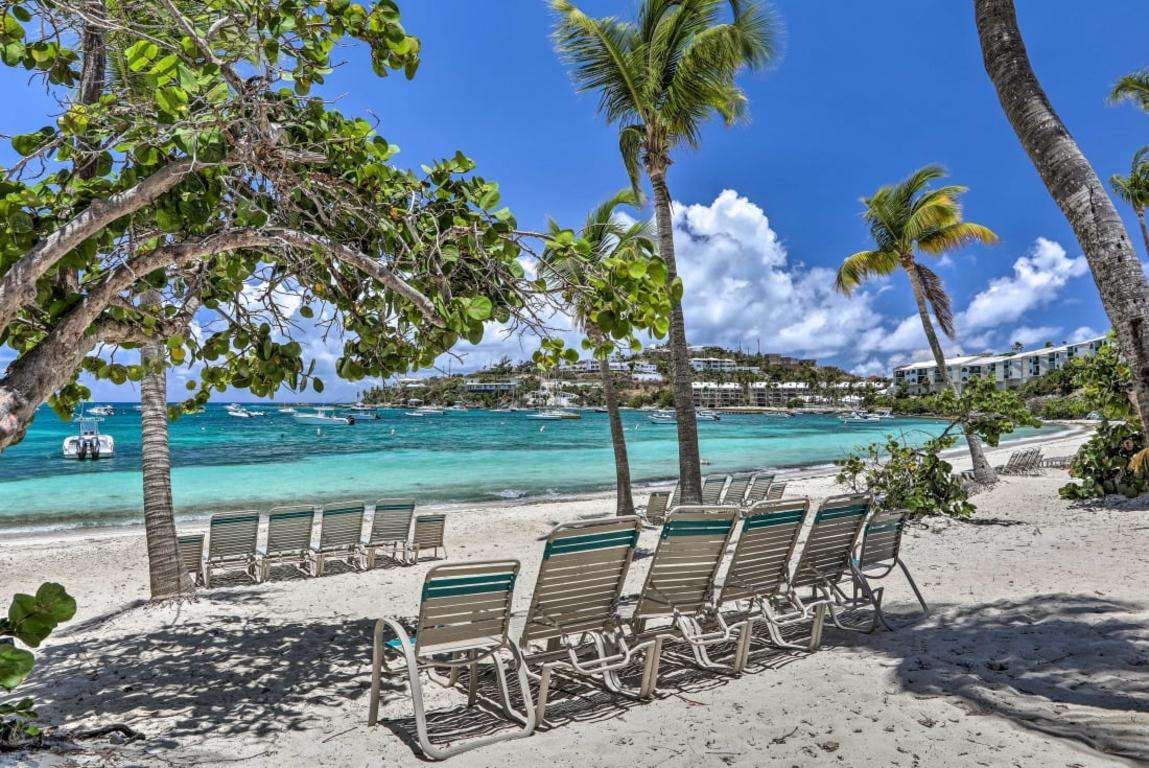 Plenty of Palm Trees and Lounge Chairs