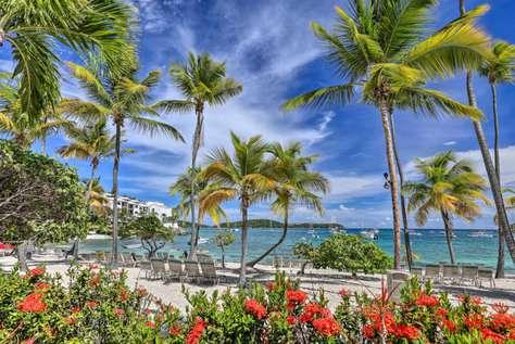 Palm Paradise at Elysian Beach Resort