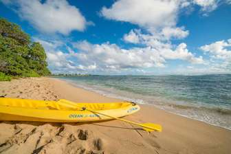 Nearby kayak rentals can deliver to your door. thumb