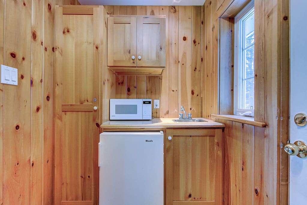 Little fridge and microwave