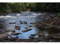 Muskoka River thumb
