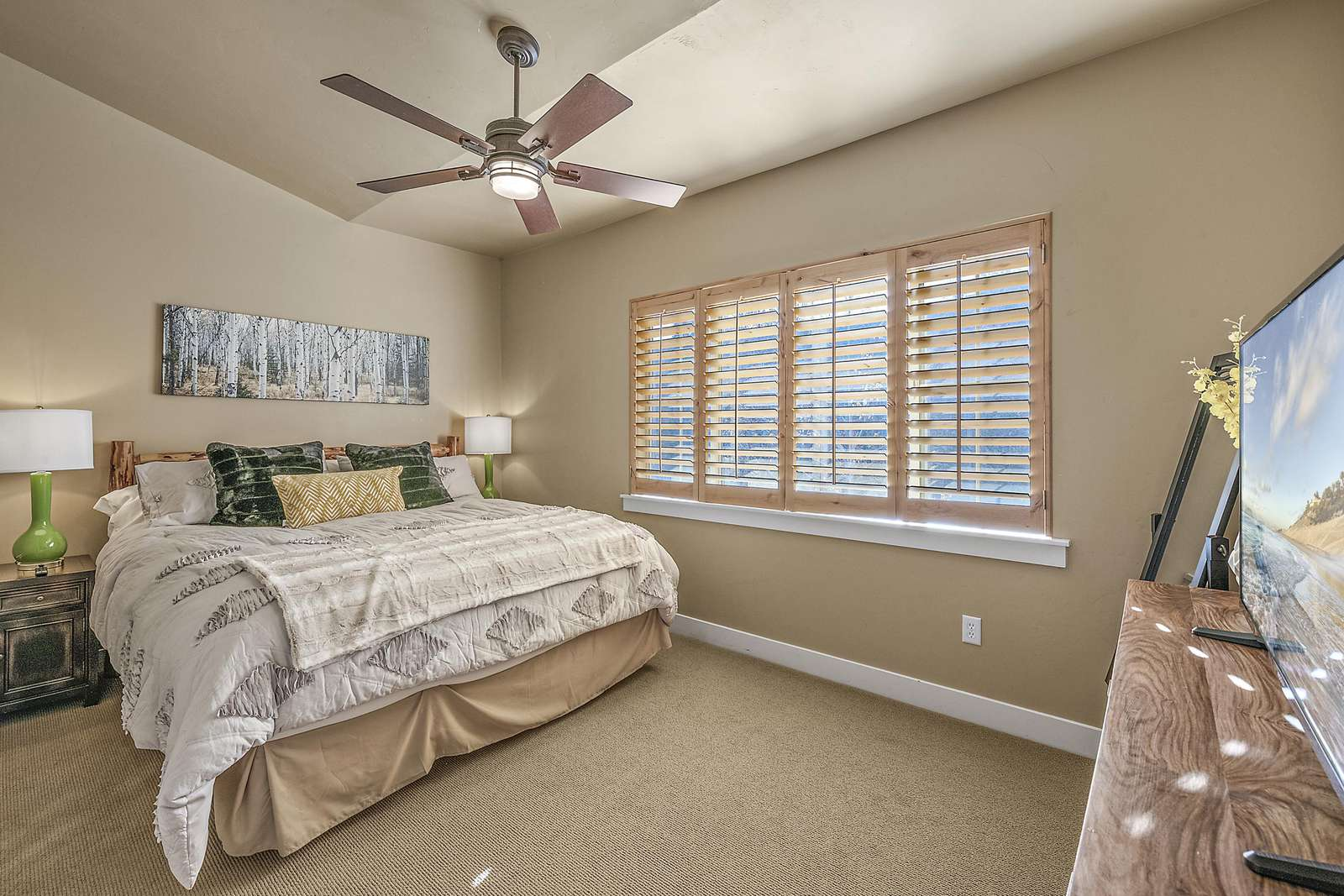 Master bedroom with personal dresser, closet, and TV