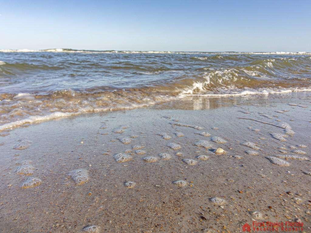 See Ray Shores - Beach!