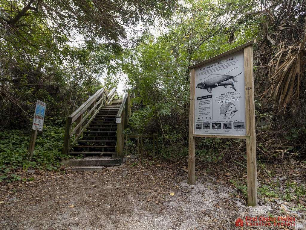 Tarpon Run 35 - Beach Access