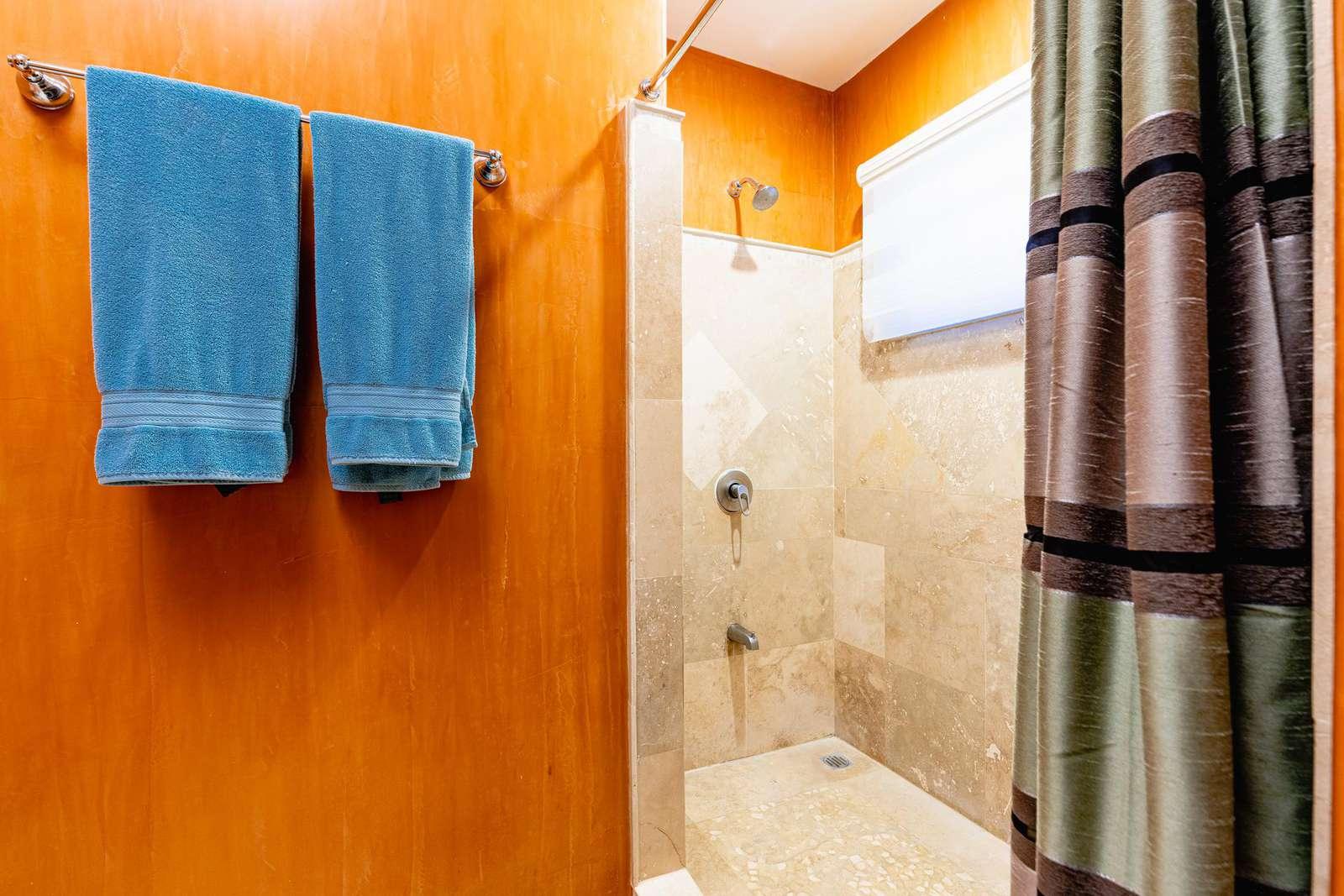 Guest bathroom, walk in shower