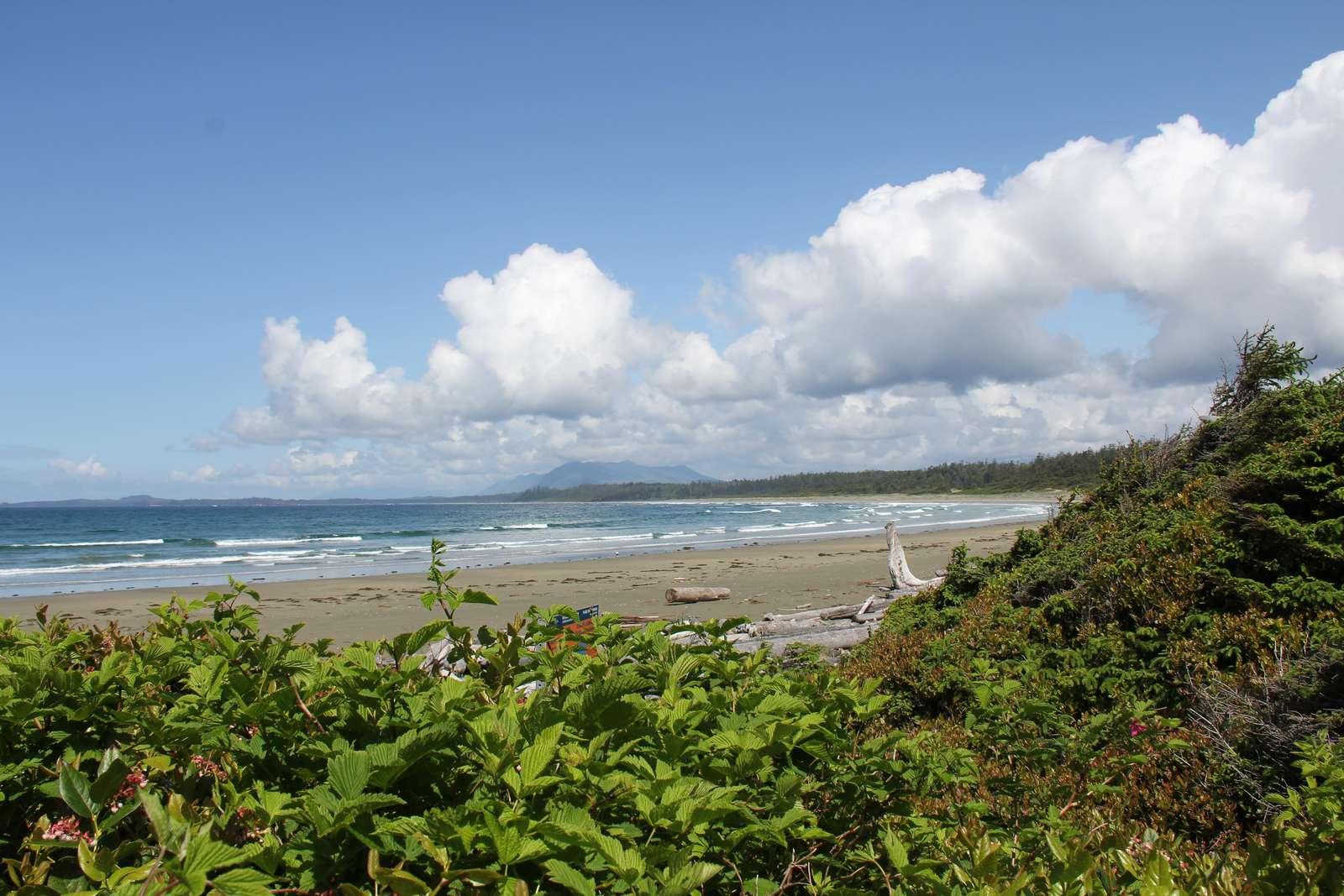 Wick Beach - property