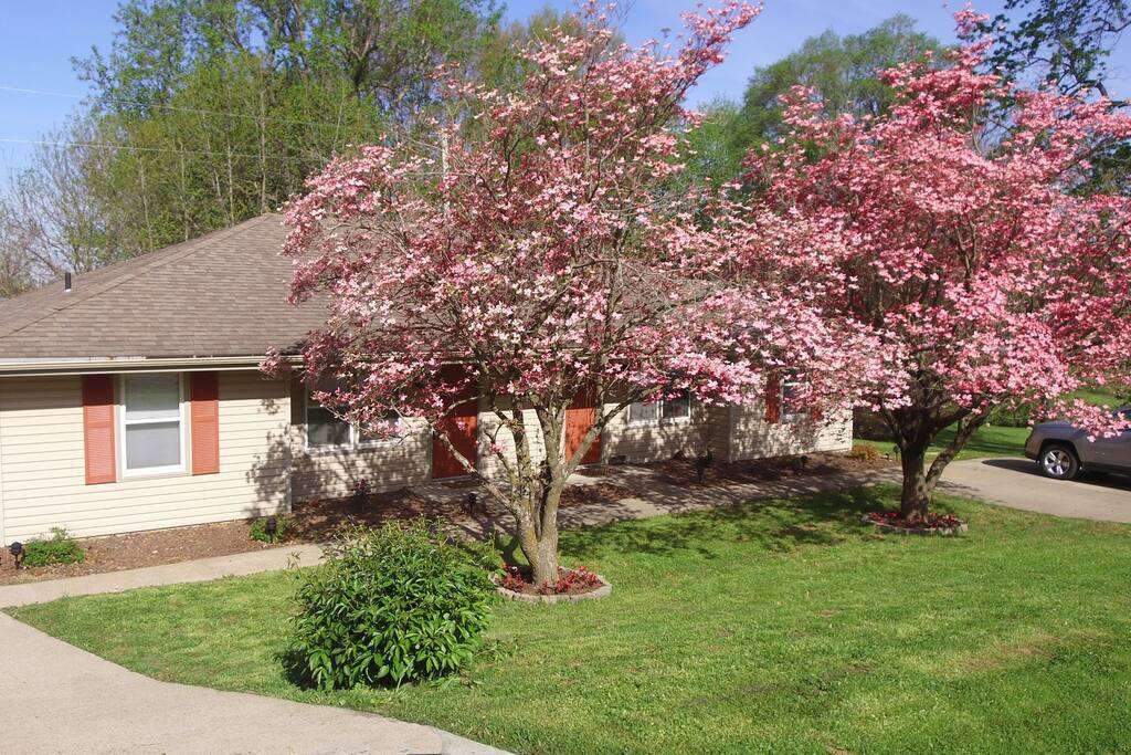 804-A South 38th Street - property