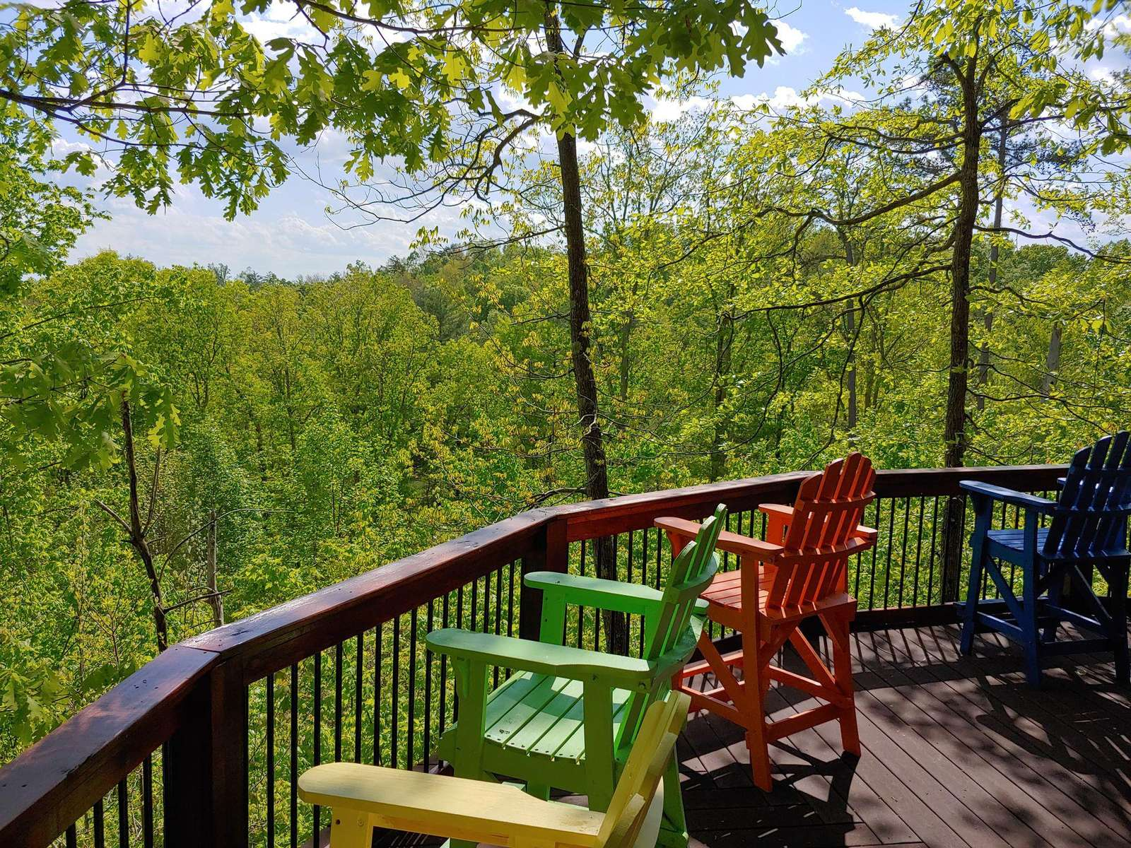 View from Bear Naked Cabin