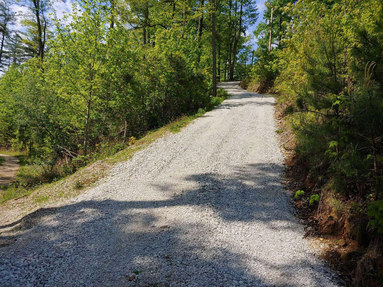 ***4-WHEEL DRIVE REQUIRED*** for the gravel driveway to Bear Naked Cabin