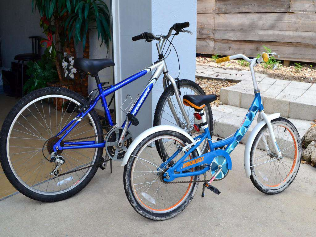 Purple Pelican - Bikes