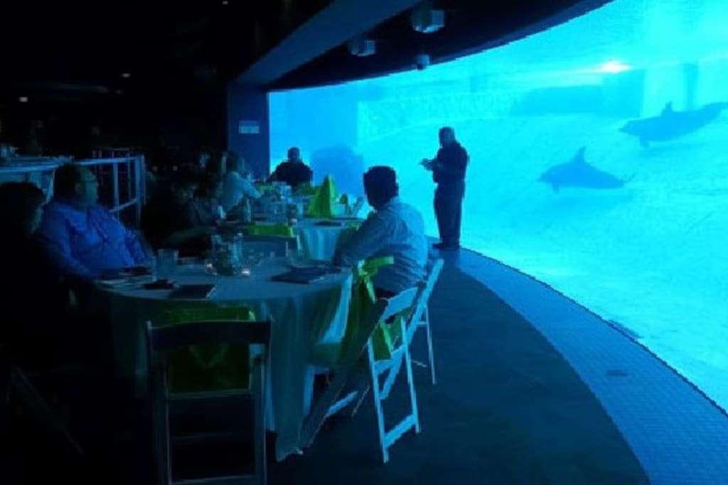 Texas State Aquarium is 1 mile down the beach