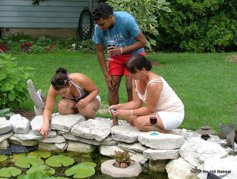 Checking Pond Life