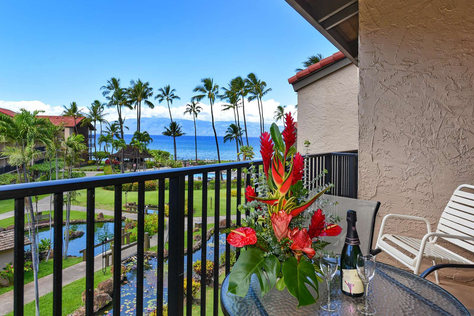 View from Lanai - property