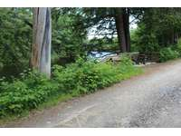 Road between water and cottage thumb